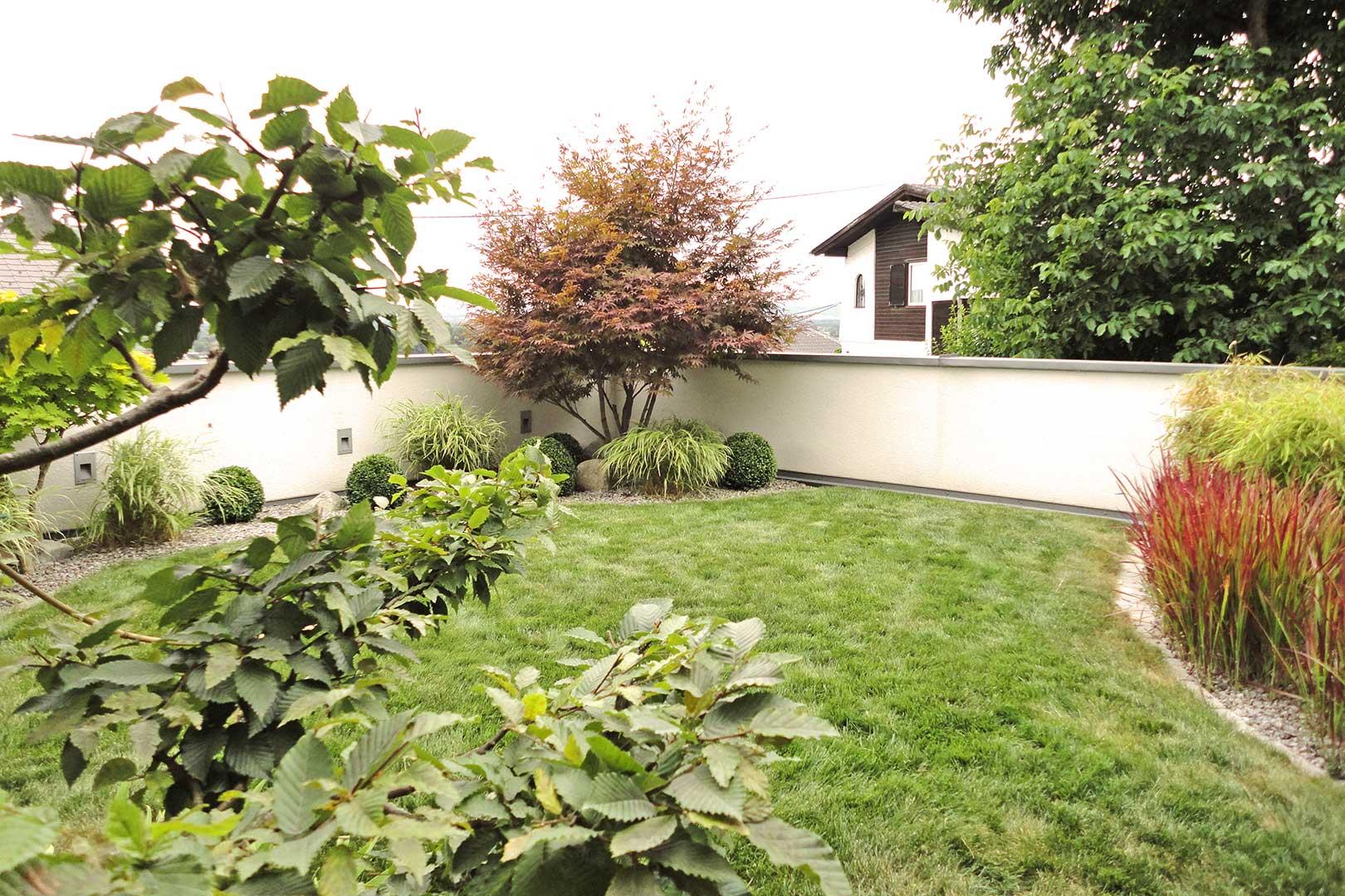 Garten Sträucher