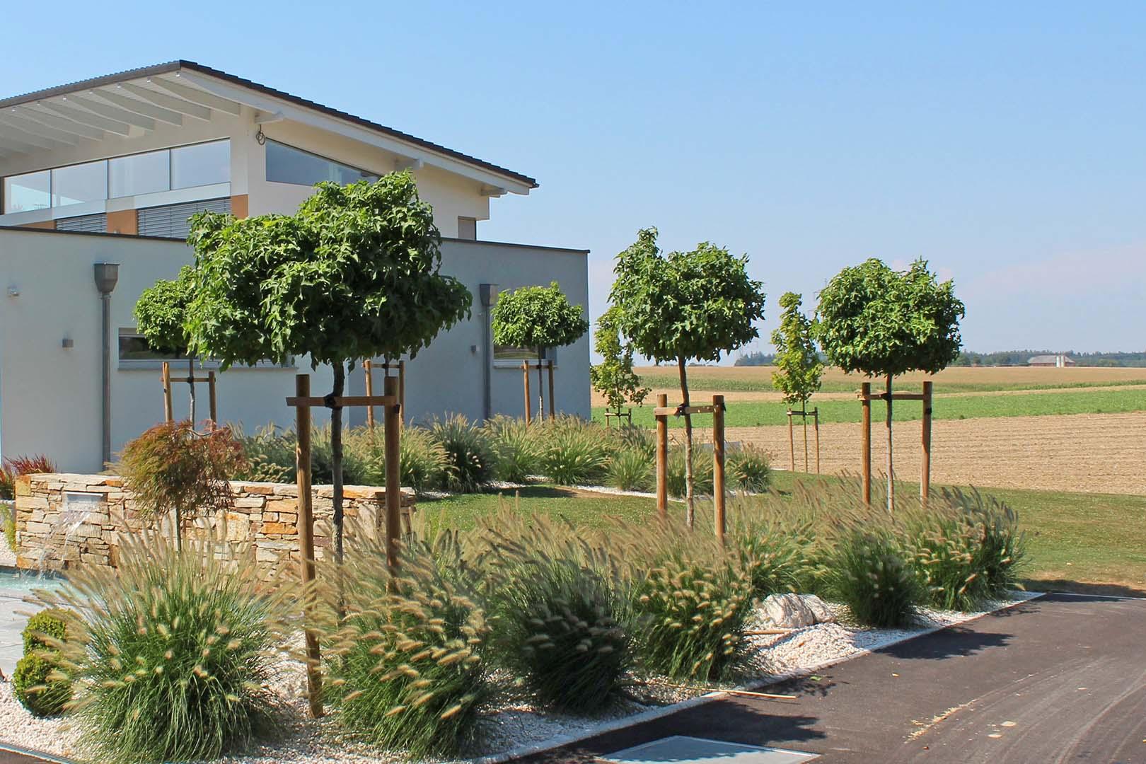 Gartendesign Bäumen