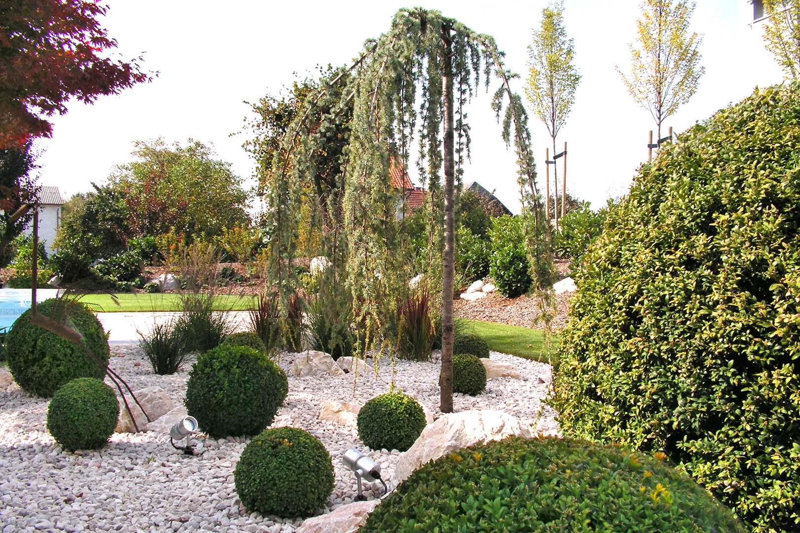 Gartenplanung Grünpflanzen