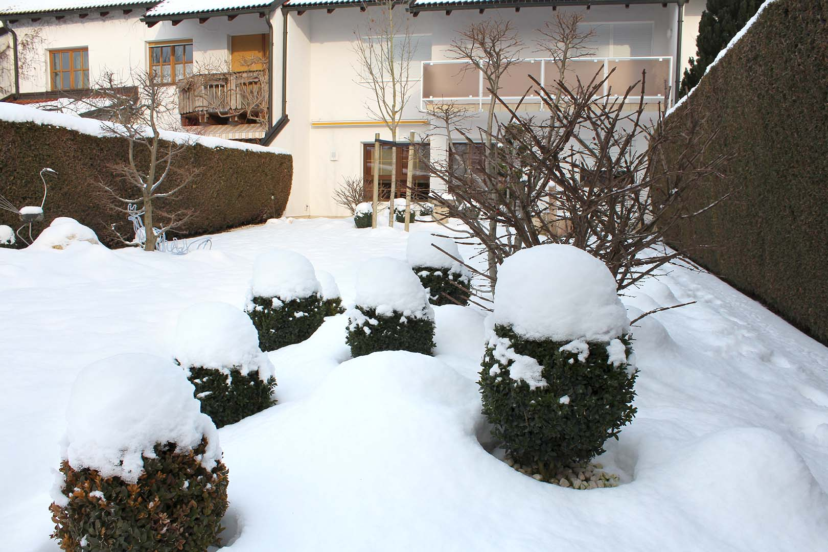 Gartendesign Sträucher