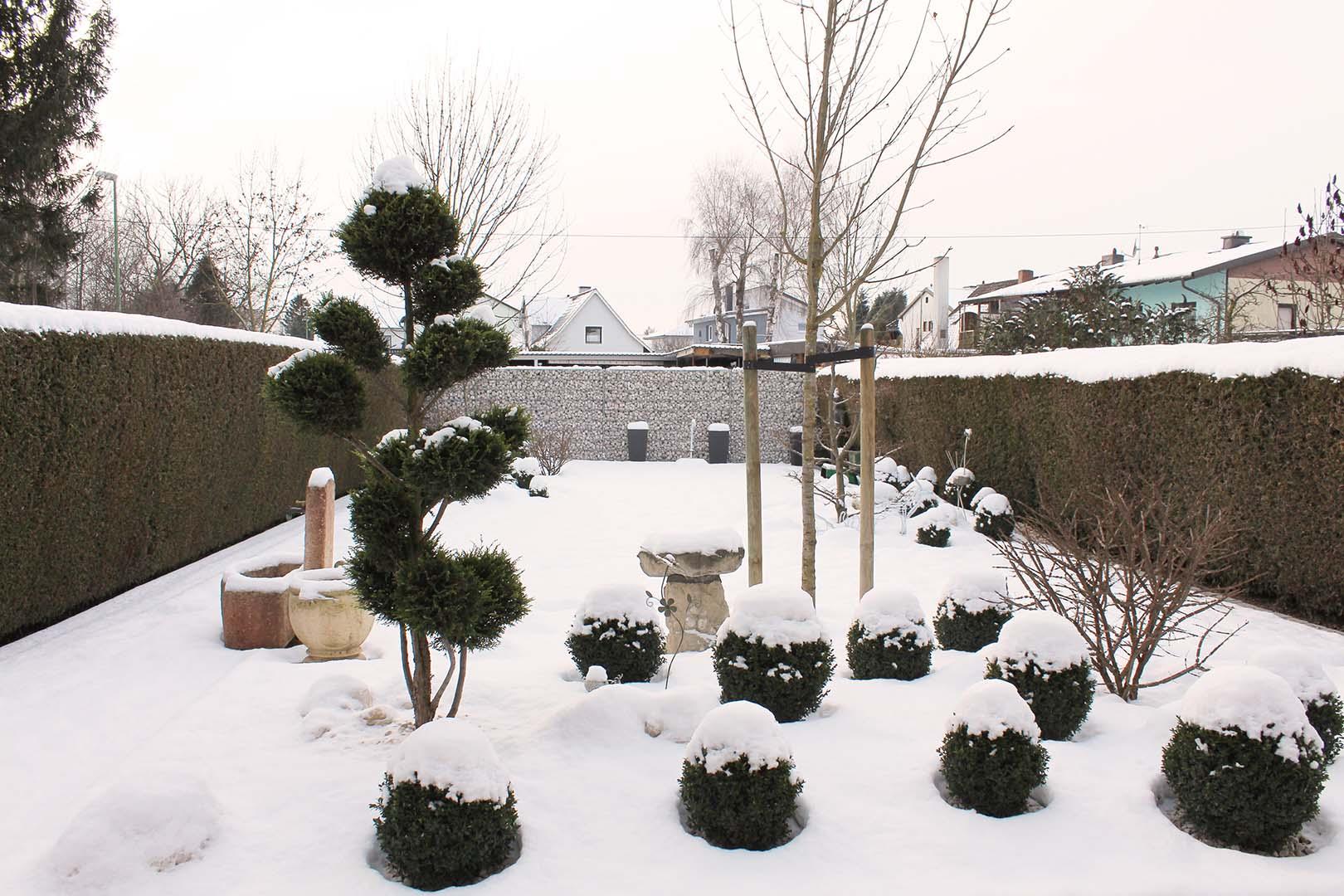 Gartengestaltung Winter