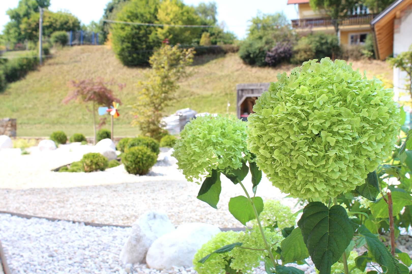 Gartengestaltung Blume