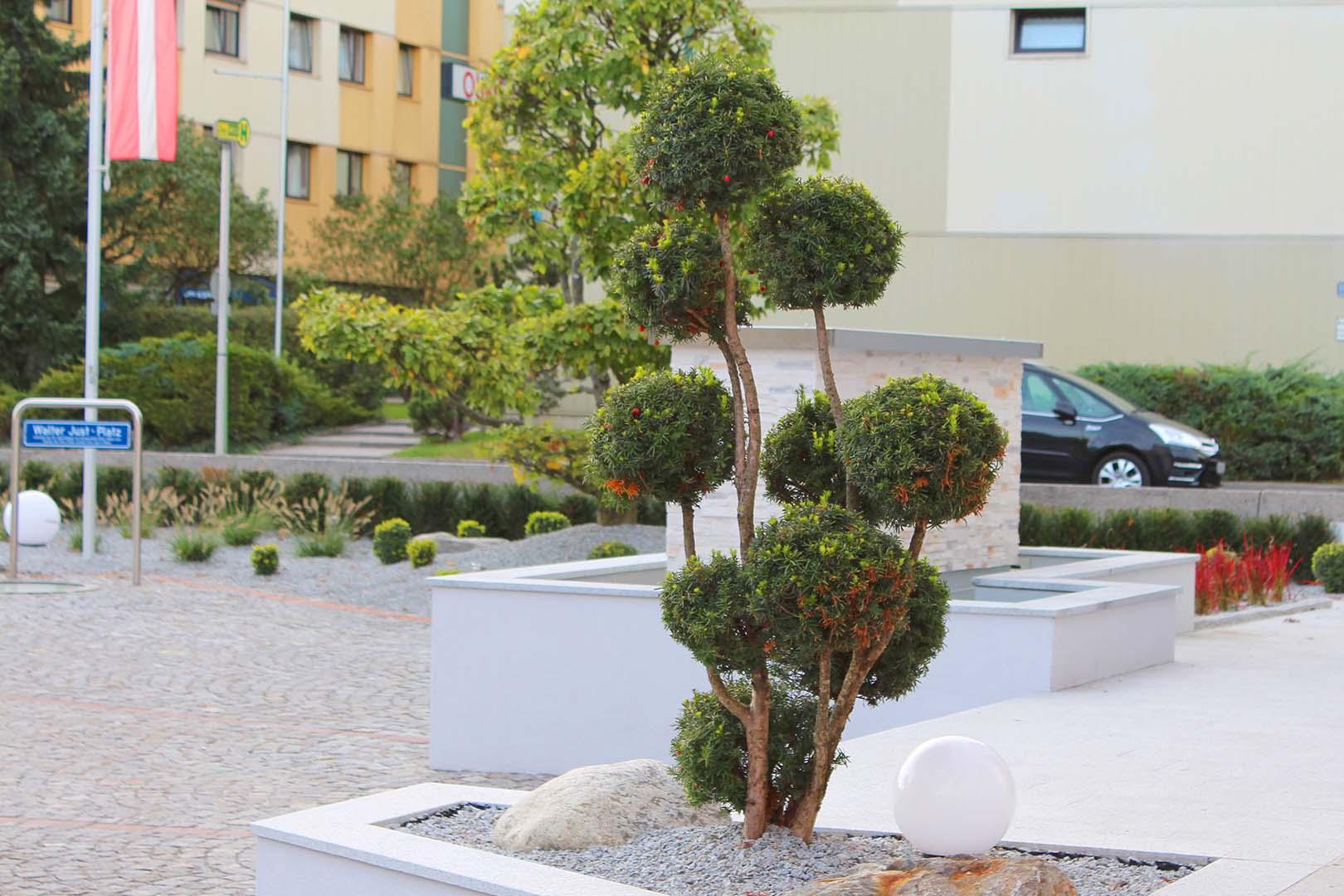 Gartengestaltung Steineinfassung Baum